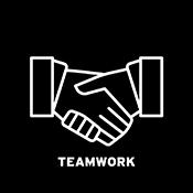 NACE Teamwork Competency