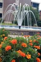 Image of the water fountain by the University Center on the NSU Tahlequah campus